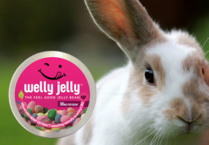 CBD INFUSED JELLY BEANS - WELLY JELLY -THE FEEL GOOD JELLY BEAN